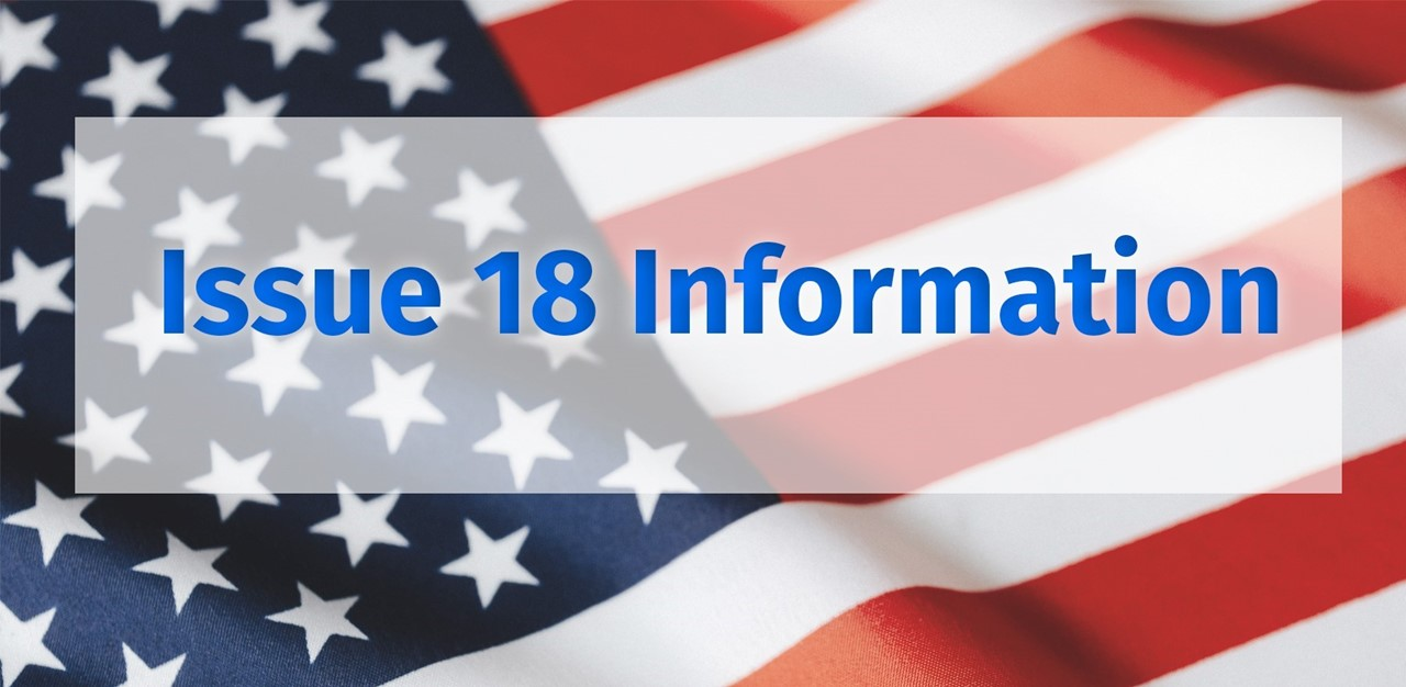 American Flag - Issue 18 Information